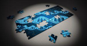 遺伝子パズル